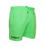 Bodhus-neon